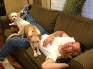 Nap with dogs